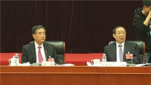 汪洋副总理参加安徽代表团审议 本网编委盛学友会后抓拍精